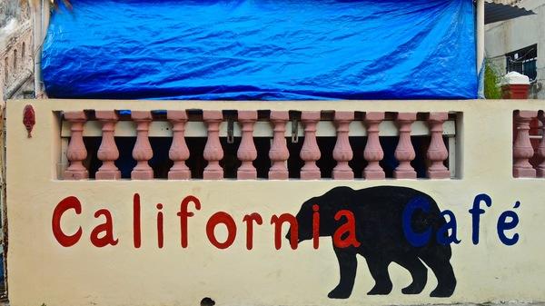 california-bear-la-havane-2016
