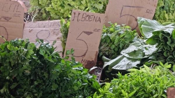 Herbes et salades, marché Egido, La Havane 2012