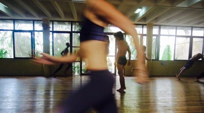 Danse : instantanés d'un festival