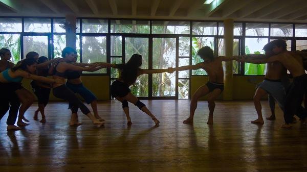 Danza Contemporanea de Cuba : un studio ouvert sur la végétation